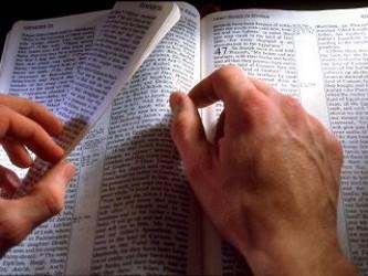 La Iglesia Católica estableció el canon o lista de los libros que componen el Nuevo Testamento....