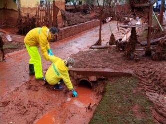 Las autoridades ya han advertido que habrá que retirar la tierra afectada, cubierta ahora por una...