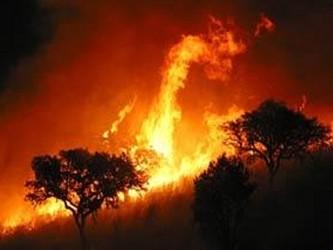 El incendio, que se inició el fin de semana, tomó fuerza allí en las últimas horas debido al fuerte...