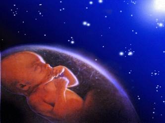 Una vez más es preciso afirmar que el aborto implica la destrucción de la vida de un ser humano...