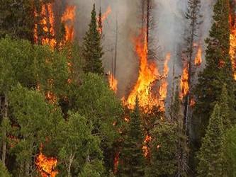 Los investigadores son capaces de averiguar cómo varía la frecuencia de incendios en una región en...
