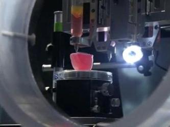 """Según el experto, la """"bioimpresora 3D"""" puede fabricar """"tejido estable a escala..."""