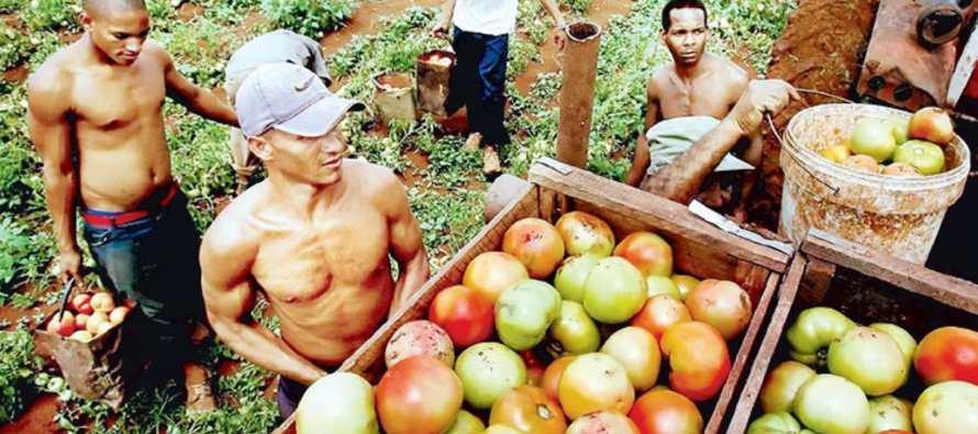 El Periodico De Mexico Noticias De Mexico Agropecuaria Un Concurso De Carteles Y Videos Con Motivo Del Dia Mundial De La Alimentacion 2016