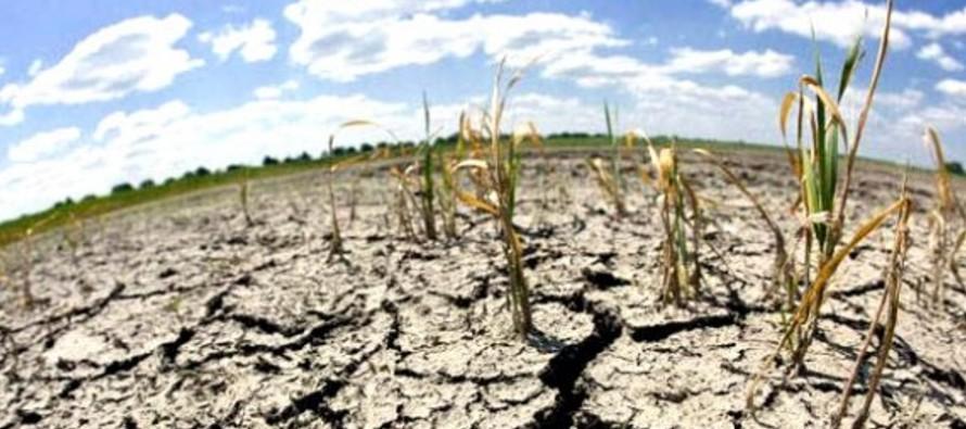 Al menos 131 de los 189 países que integran la Convención de cambio climático de la ONU han...