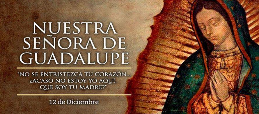 Miles de personas de México y del mundo entero, visitan cada año la Basílica de Guadalupe, en donde...