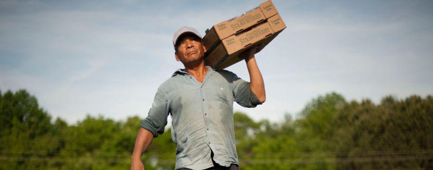 Industria agrícola presionará por una prioritaria reforma migratoria