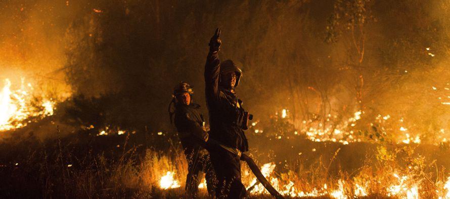 Pero el gobierno ha reconocido que hay evidencia de que los incendios han sido intencionales en...