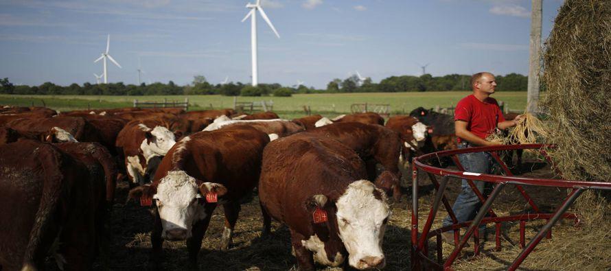 Una coalición de 133 compañías productoras que exportan productos agrícolas, que representan a más...