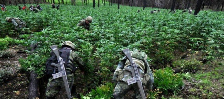 Patrullas del ejército fueron baleadas en dos ocasiones esta semana cuando intentaban eliminar...