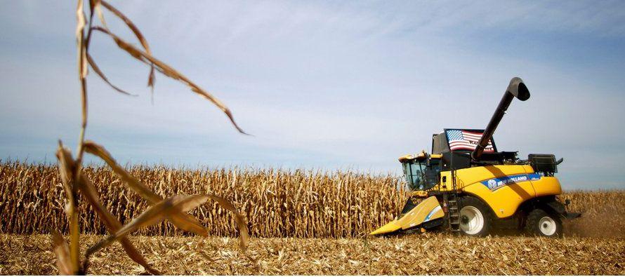 La razón: la mayor parte del maíz que se consume en México proviene de Estados Unidos,...