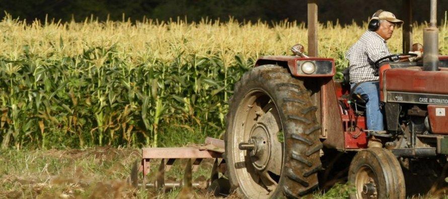 Expertos aseguran que la alimentación del mundo depende de América Latina
