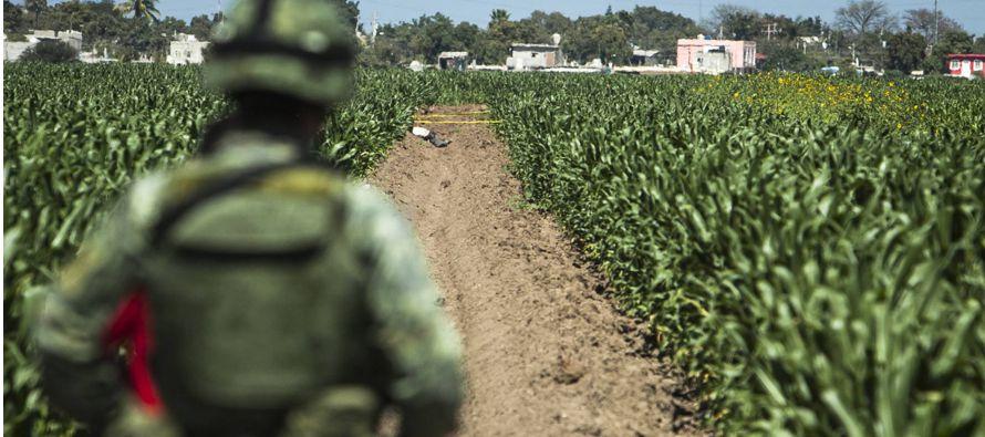 El Periódico De México Noticias De México Nacional