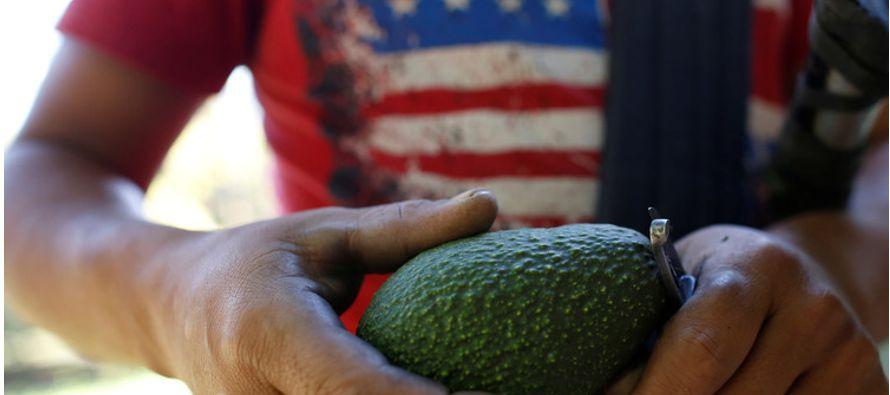 Y por supuesto, uno de los mayores consumidores de esta fruta procedente de México es su vecino del...
