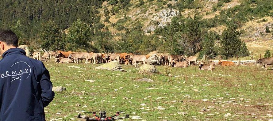 Al intervenir ante la Comisión de Agricultura y Desarrollo Rural del Parlamento Europeo, instó a...