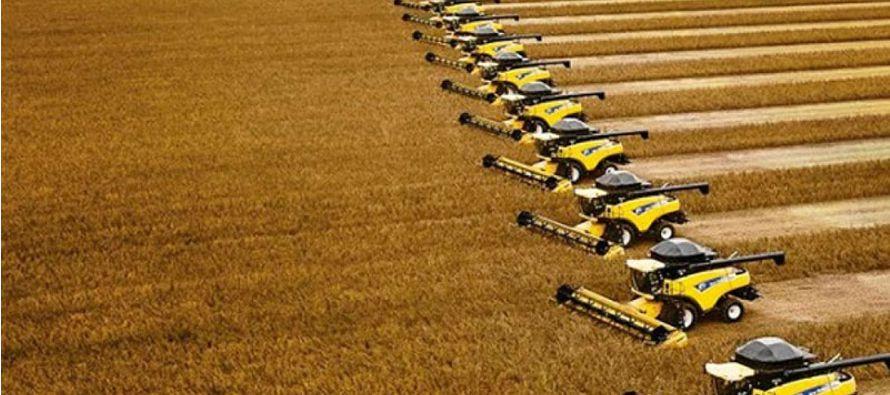 Uno de los pocos ajustes a la baja en el pronóstico mensual de Conab fue para el trigo. La agencia...