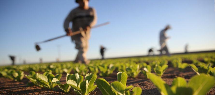 Operando bajo el U.S. Food and Agriculture Dialogue for Trade, más de 130 grupos de materias...