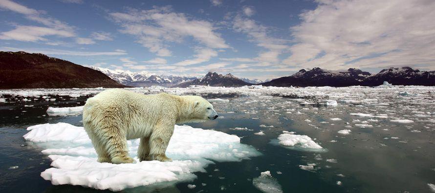 Se cree que dos especies vertebradas se extinguen cada año, lo que los autores recalcan...