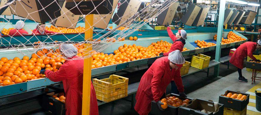 Proponen a OMC favorecer sector agrícola de países en desarrollo