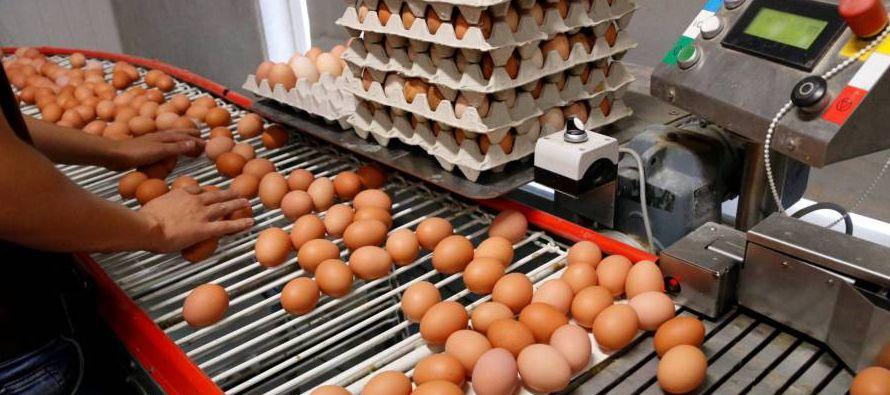 La red de alerta europea ha constatado que se han distribuido huevos sospechosos de...