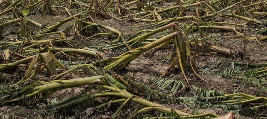 El huracán María tocó tierra aquí el miércoles como un...