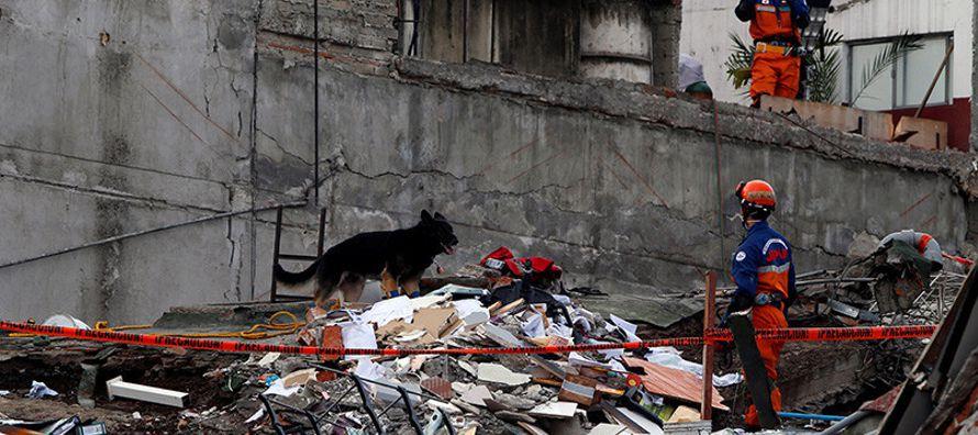 Del total de fallecidos, 228 se encontraban en la Ciudad de México, 74 en Morelos, 45 en...