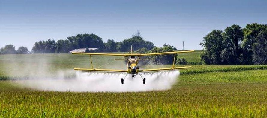 """""""Antes de introducir cultivos genéticamente modificados, pocas personas tenían..."""