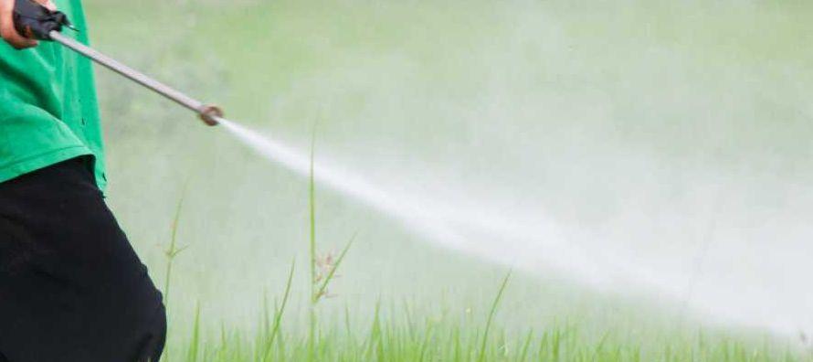 En la demanda, presentada en un tribunal federal de California, Monsanto y grupos que representan a...