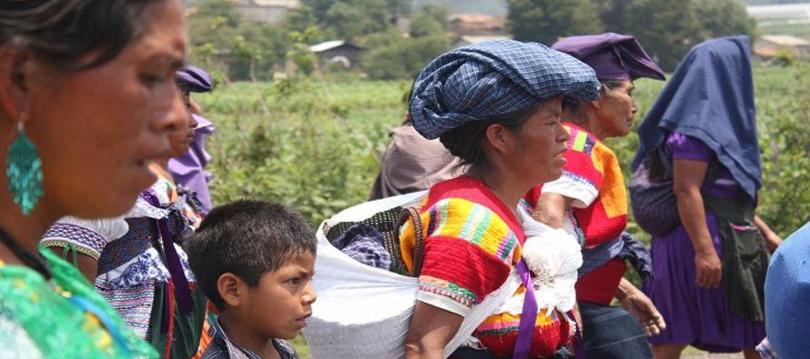 Hombres, mujeres, niños y ancianos se han refugiado en zonas selváticas y...