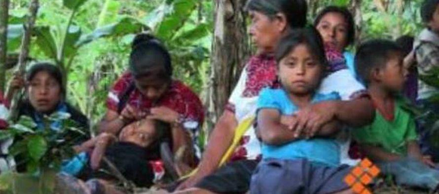 El obispo de San Cristóbal de las Casas, Felipe Arimendi, alertó que se corre el...