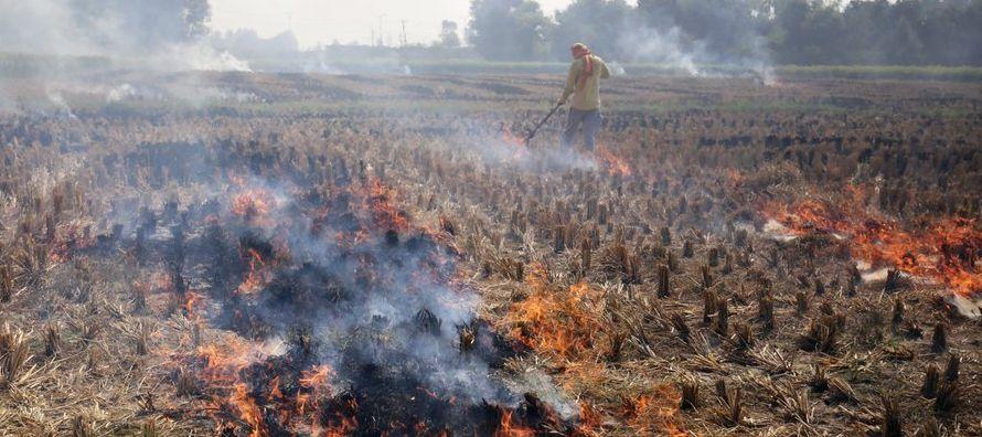 La crisis de esmog afecta la esencia de la imagen que India quiere proyectar hacia el extranjero;...