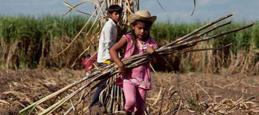 El plan busca no sólo apartar a los pequeños de labores sobre todo agrícolas...