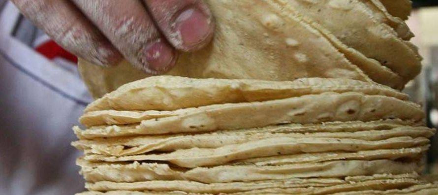 """Con esta """"enorme"""" y """"desconocida"""" diversidad de maíces, la tortilla..."""
