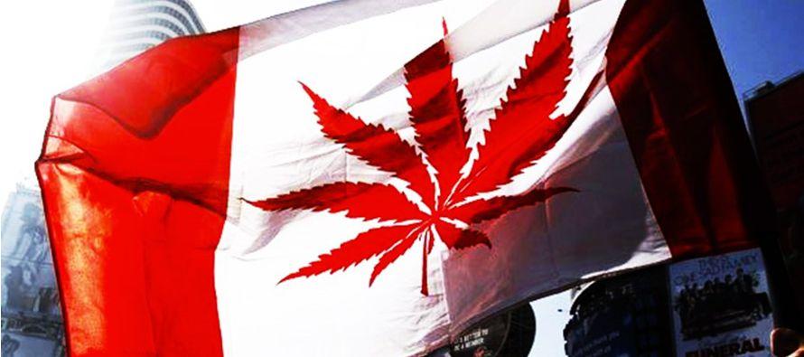 Canadá ha anunciado que legalizará el consumo de marihuana para fines recreativos...