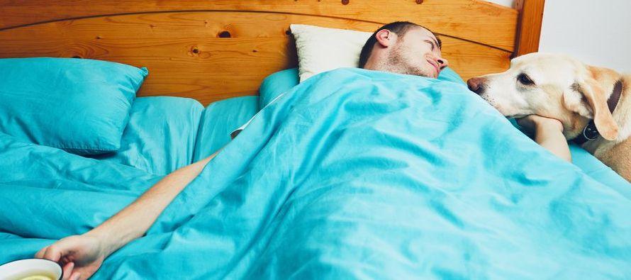 Cuando a mi pareja le da un fuerte resfriado o gripe, ¿hay algo que pueda hacer para reducir...