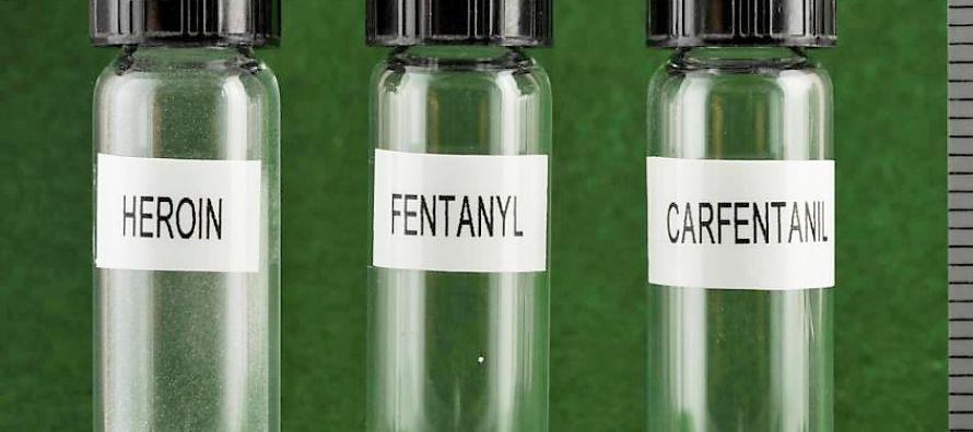 El regulador federal tomó la decisión después de analizarla a nivel molecular...
