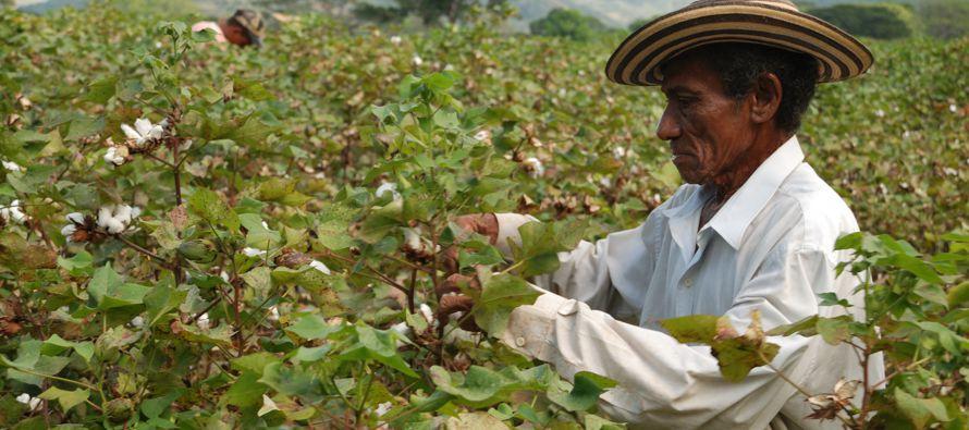 Aseguró que el sector privado puede ayudar a la inclusión social y a la...