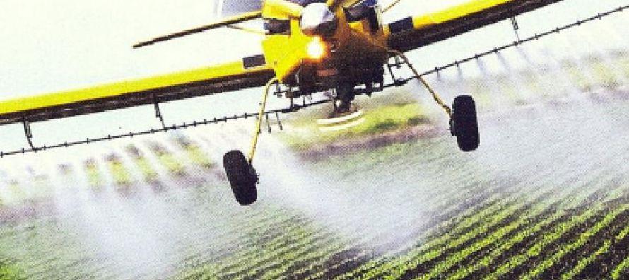 La fruta que con más frecuencia presentaba trazas de pesticidas es la uva (se...