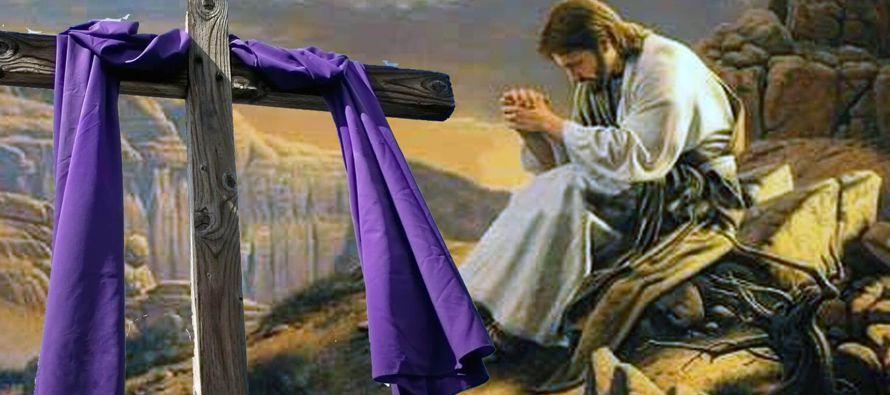 La celebración litúrgica no es mero recuerdo del pasado, algo que ocurrió con...
