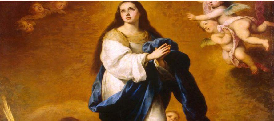 María Santísima es, en efecto, la cumbre de la creación, el vértice de...