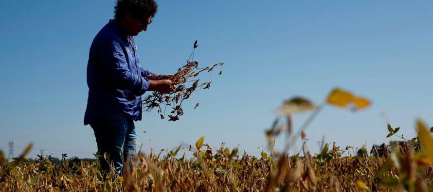 Desde noviembre, el campo argentino ha sido golpeado por la escasez de lluvia y ha encendido las...