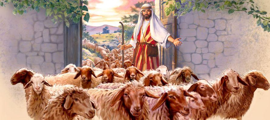 «En verdad, en verdad os digo: yo soy la puerta de las ovejas. Todos los que han venido...