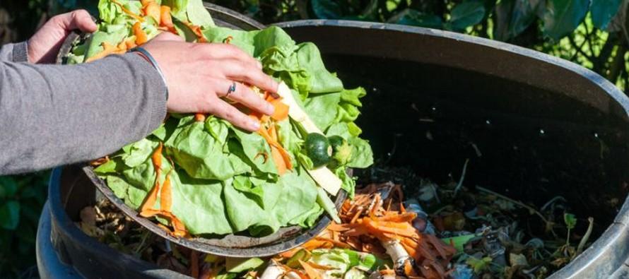 A nivel mundial se desperdician 1,300 millones de toneladas de alimentos anualmente,...