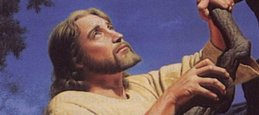 «Yo les he dado la gloria que tú me diste, para que sean uno como nosotros somos uno:...