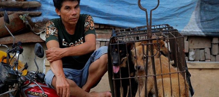 China celebra su festival de carne de perro pese alertas de riesgo para salud