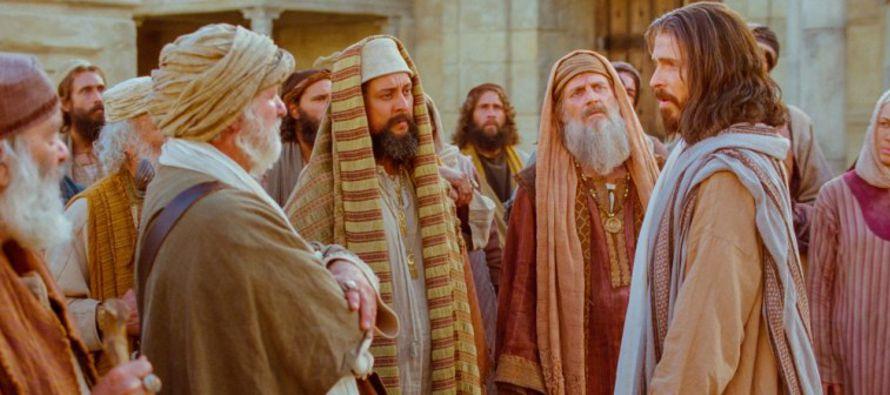 «Mirad las aves del cielo: no siembran, ni cosechan, ni recogen en graneros; y vuestro Padre...