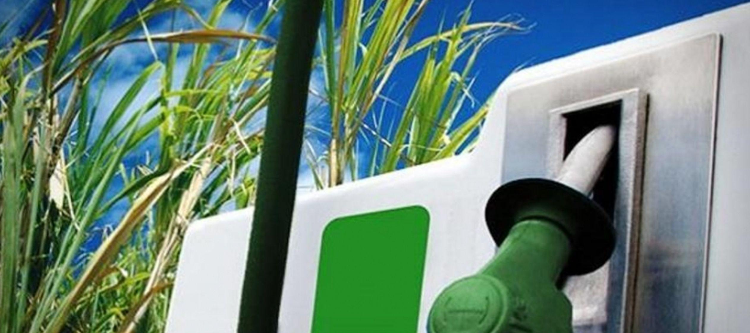 La producción de etanol de Brasil podría duplicarse al 2030 gracias a crecientes...