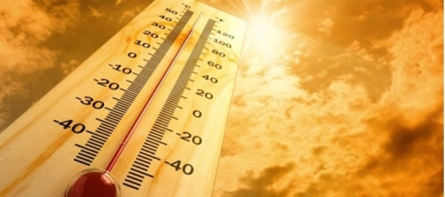 Un aumento de 3 o 4 grados Celsius podría elevar las tasas de mortalidad entre un 1 y un 9...