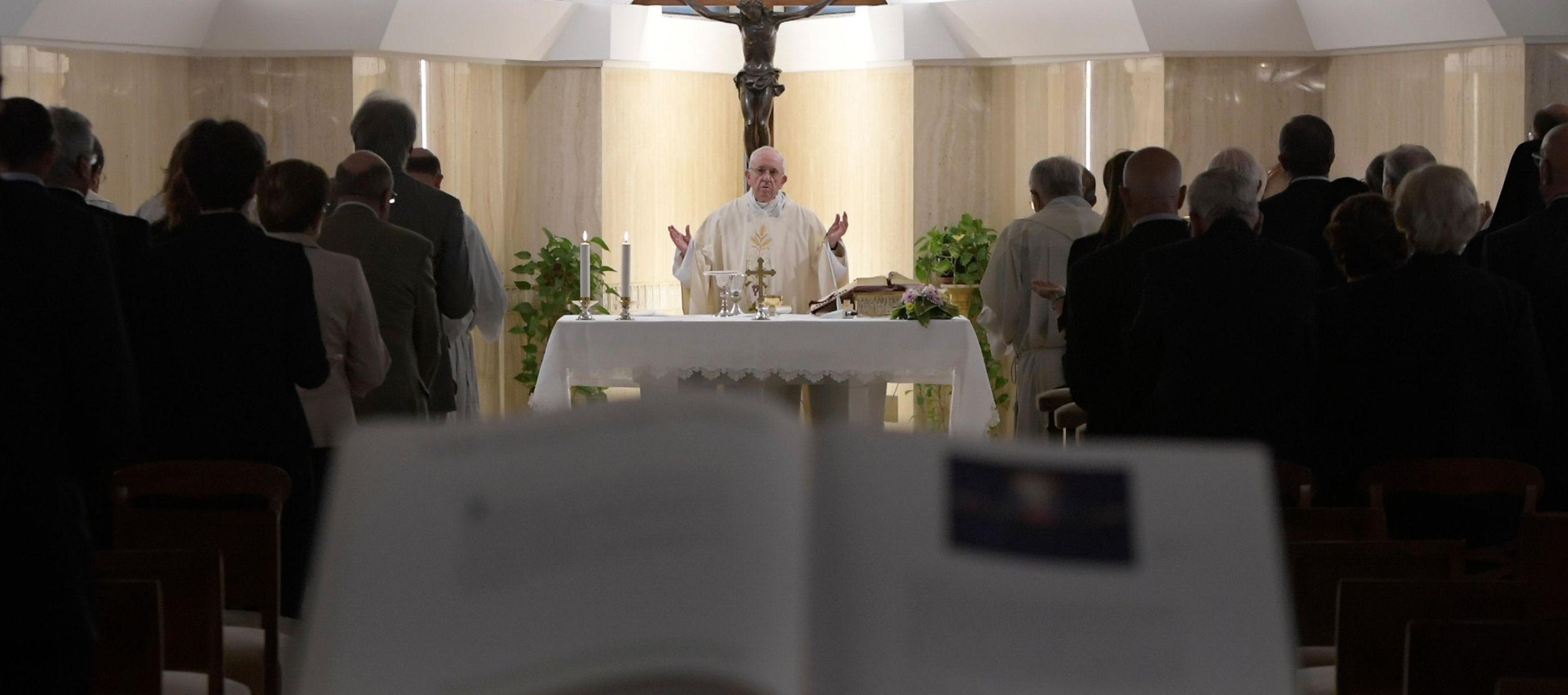 """El Sucesor de Pedro ha reiterado que """"la lógica cristiana va contracorriente"""" y..."""