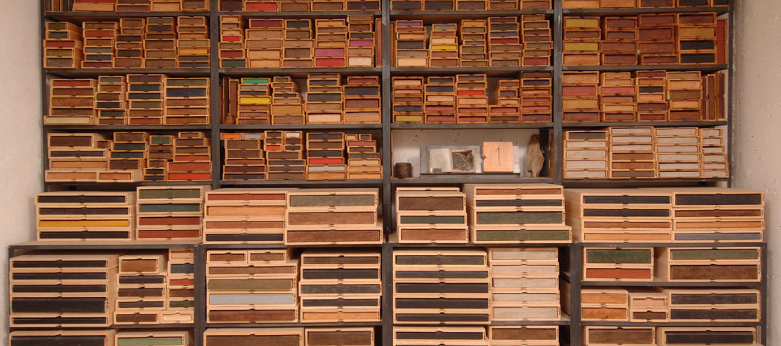 Por esos nuestras librerías han recuperado los libros de David Henry Thoreau, el ensayista y...