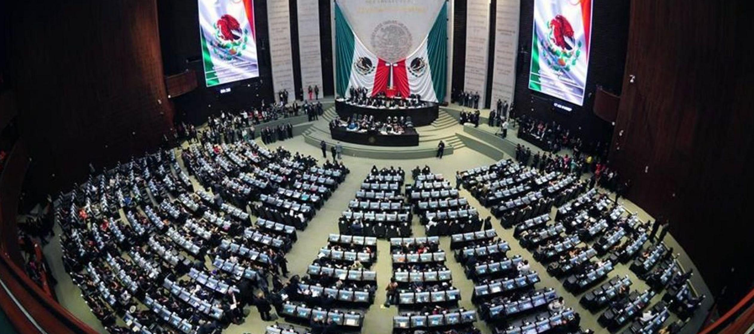 Carmen Medel gritaba en medio de la Cámara de Diputados acusando la violencia de que...